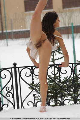 Wonderful busty girl shivers in snow - 05
