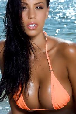 Hot Bikini Babe for Bikini Dream